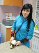 The vet Zoodoktor — all kinds of veterinary services, Kharkov